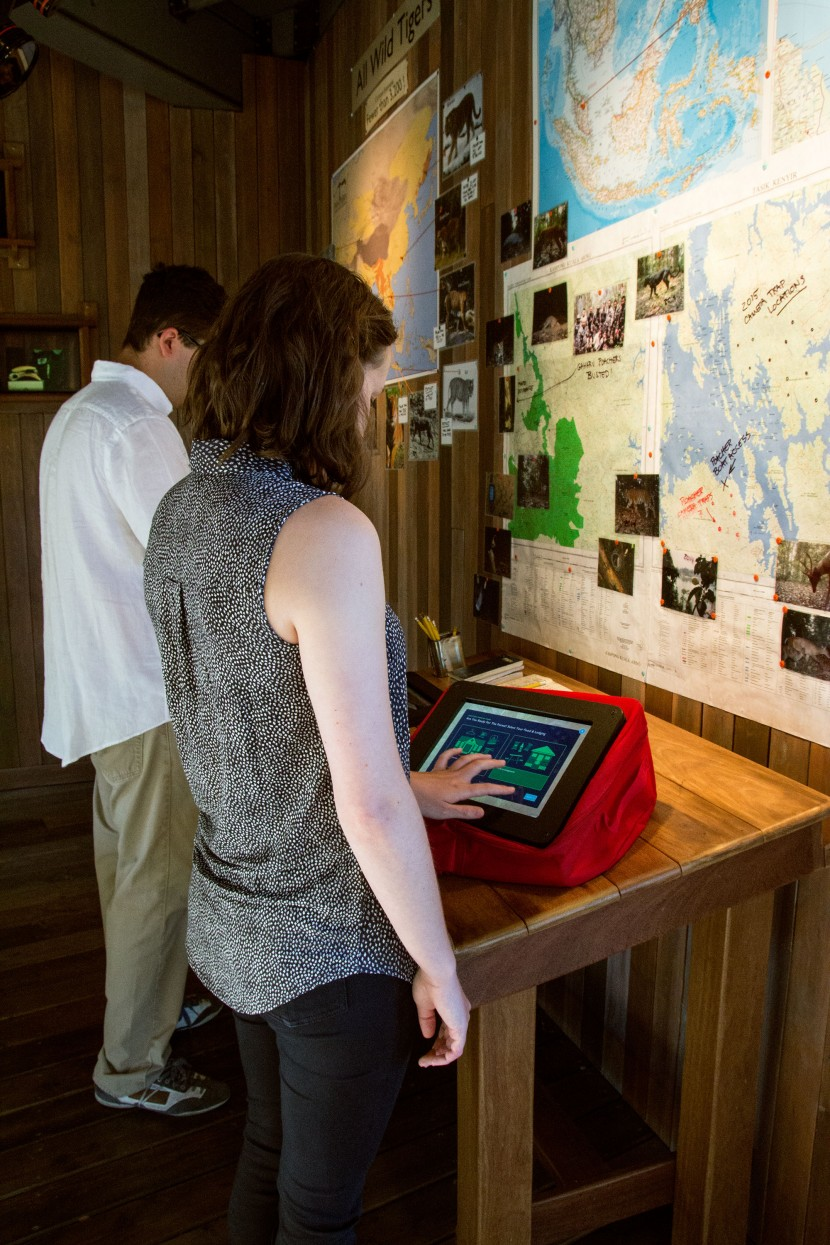 The tablet stations contain three distinct activities, educating visitors about the Malayan Tigers' endangerment.